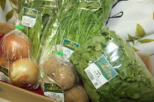 有機野菜お試しセット【食品 食材 詰め合わせ オーガニック】の画像1枚目
