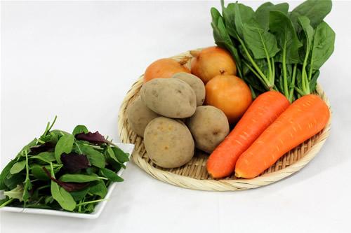 有機野菜カレーセット【食品 食材 詰め合わせ オーガニック 家庭用】の画像1枚目