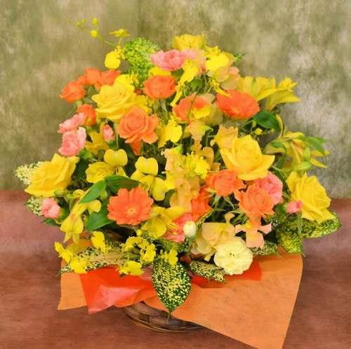 【送料無料】ビタミンカラーアレンジメント(生花アレンジメント)【花 フラワーギフト アレンジメント フラワー 誕生日】の画像1枚目
