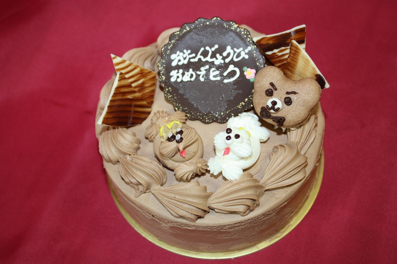 チョコ生デコレーション4号【誕生日 バースデー デコレーション チョコレート 動物】