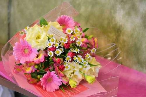 【送料無料】お花屋さんにおまかせ花束(生花)【花 フラワーギフト アレンジメント フラワー 誕生日】の画像1枚目