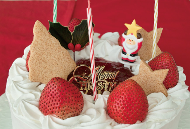 【クリスマスケーキ2016 12月18、19日お届け】イチゴのクリスマスケーキ 6号(18cm)