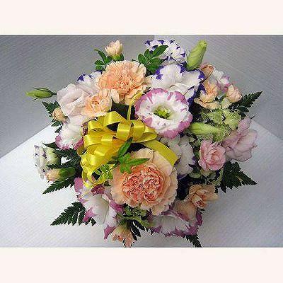 アレンジメント023【お花 贈答 フラワーギフト 観葉植物 敬老の日】