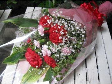 ☆大輪赤カーネーションの花束☆【母の日】【花 フラワーギフト フラワー】の画像1枚目