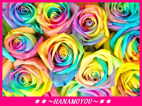 お好きな本数が選べる!レインボーローズの花束【バラ ローズ レインボーローズ はな 花 フラワーギフト プレゼント】の画像1枚目