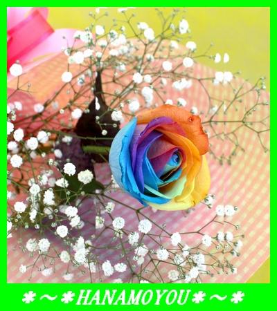 レインボーローズとカスミソウの花束*1ローズ*レインボーローズの花束の画像1枚目