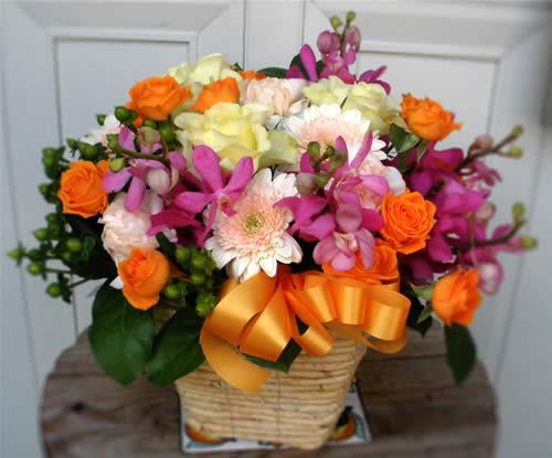 【ポイント10倍】アレンジ カラフルキュート【花 フラワーギフト プレゼント アレンジメント フラワー】