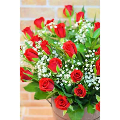 【送料無料】アニバーサリーブーケ(ローズ)1本【花 フラワーギフト プレゼント お祝い 誕生日 贈り物 薔薇 バラ】10本以上より配送承りますの画像1枚目