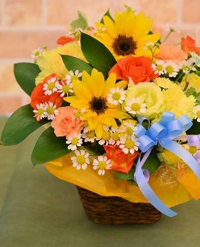 【送料無料】夏のひまわりアレンジS【花 フラワーギフト アレンジメント フラワー 誕生日】