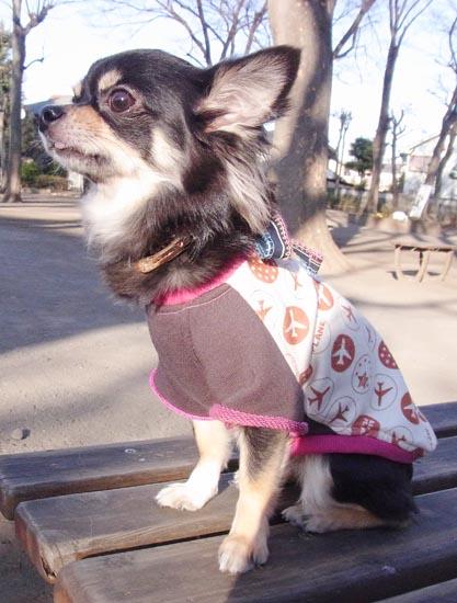 プレインTシャツ ピンク【誕生日 贈り物 プレゼント お祝い ペット 洋服】の画像1枚目