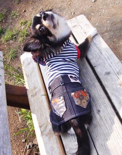 和柄デニムスカート ブルー【誕生日 贈り物 プレゼント お祝い ペット 洋服】の画像2枚目