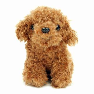 トイプードルのぬいぐるみ(レッド)【犬 プレゼント 贈り物 誕生日 記念日 ギフト】の画像1枚目