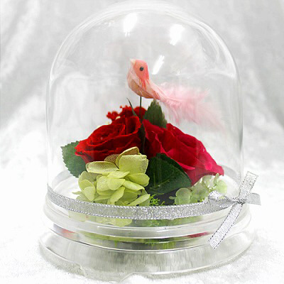 ガーデンドームL【プリザーブドフラワー アレンジメント フラワーギフト プレゼント ギフト】の画像1枚目