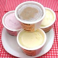 豆乳アイスクリーム4種類10個セット(卵、乳、小麦対応)