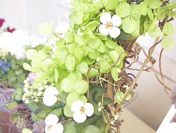【紫陽花(あじさい/アジサイ)グリーン】プリザーブドフラワー