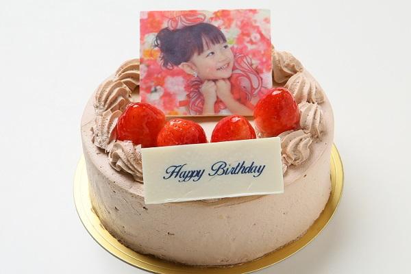 【写真ケーキ】苺たっぷり!チョコ生クリームフォトデコレーションケーキ 5号