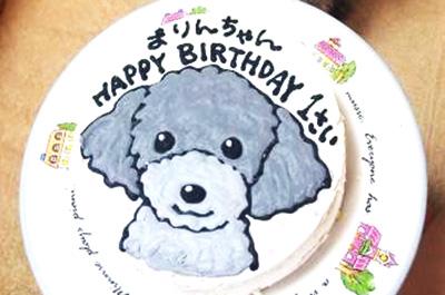 【ありがとうの声】犬用ケーキでわんちゃんもわくわくの誕生日♪
