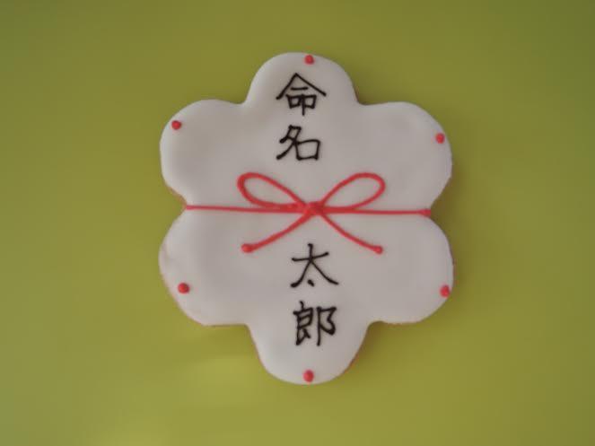 アイシングクッキー(のし:命名/祝/結/感謝)名前入り 10枚セット