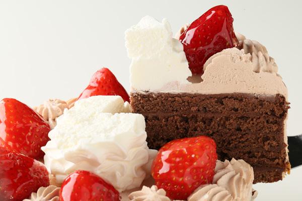 チョコクリームフォトケーキ 5号 15cmの画像3枚目