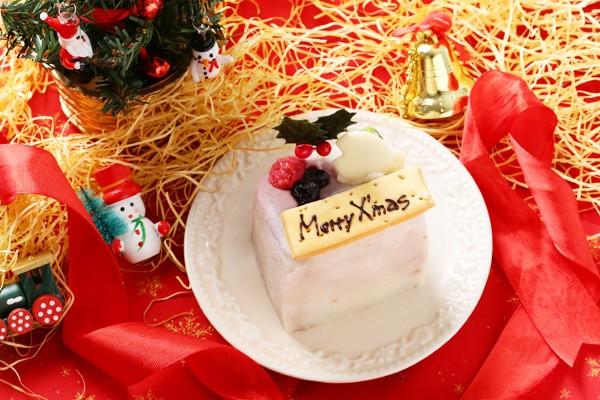 クリスマスケーキ【ねこちゃん用】