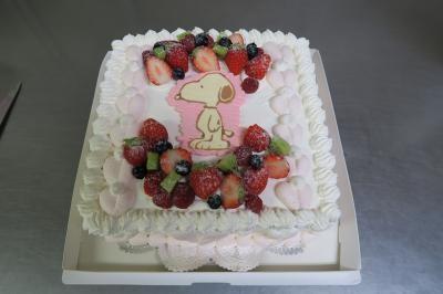 【栃木県栃木市・小山市・佐野市 限定配送】【送料無料】パーティー用大型ケーキ スクウェア