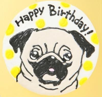 わんちゃん用似顔絵入り豆乳ケーキ18cm【誕生日 デコ バースデー ケーキ】の画像4枚目