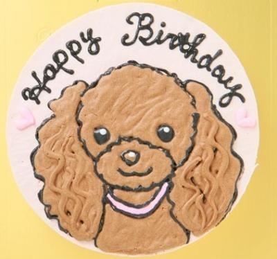 わんちゃん用似顔絵入り豆乳ケーキ18cm【誕生日 デコ バースデー ケーキ】の画像5枚目