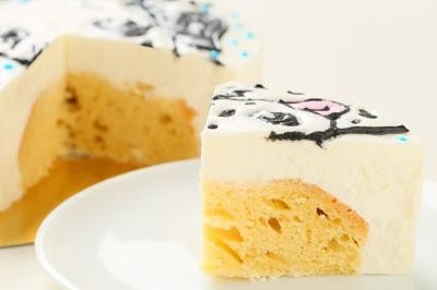 わんちゃん用似顔絵入りレアチーズケーキ18cm【誕生日 デコ バースデー ケーキ】の画像8枚目