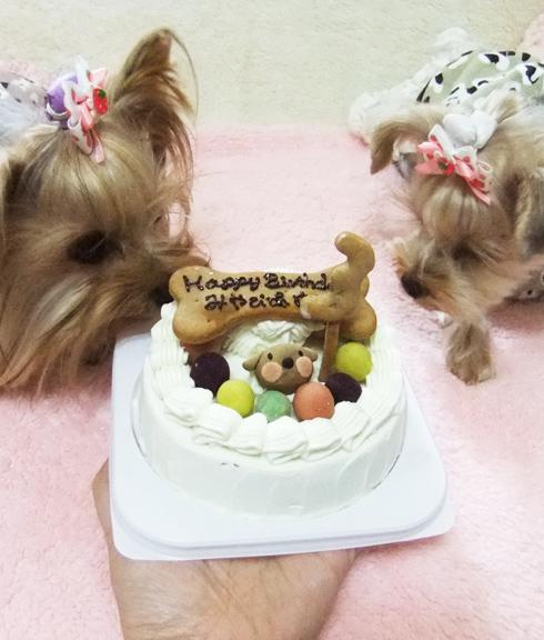 中・大型犬用☆ハッピーミート お肉のケーキ  オーダーオプション有り 12cmの画像5枚目