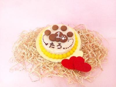 ◆ぷっくり肉球ケーキ◆ ペット用【ペット用おやつ 犬用ごはん ペット用ごはん 犬用 ペット用 ケーキ ごはん おやつ】の画像4枚目