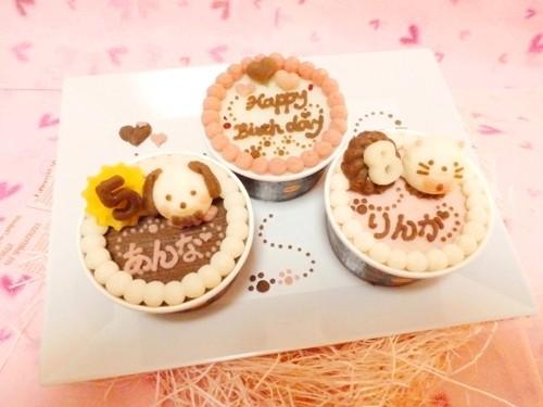 ◆お豆腐ケーキ にゃんコロン&Happy Birthdayケーキ◆猫用ケーキ,ペット用ケーキ,猫用バースデーケーキ