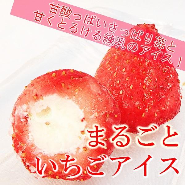 春摘み苺と練乳アイスの苺アイス20個ギフトセット
