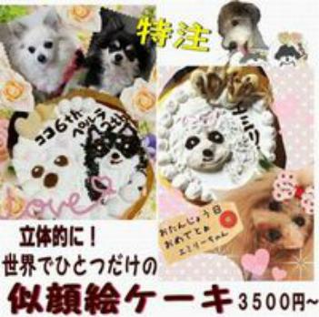 犬 似顔絵ケーキ 世界でひとつだけ ささみor馬肉or鮭を選べます 4号 12cm