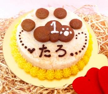 ◆ぷっくり肉球ケーキ◆ ペット用【ペット用おやつ 犬用ごはん ペット用ごはん 犬用 ペット用 ケーキ ごはん おやつ】の画像1枚目
