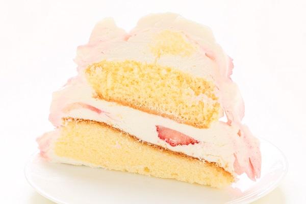 ドールケーキ 底面20cm×高さ18cmの画像6枚目