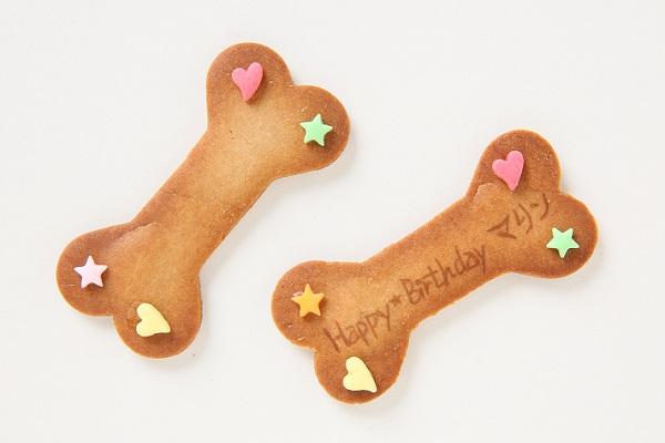わんちゃん用EWP対応 小型犬用 ワンワン写真ケーキ 4号 12cmの画像9枚目