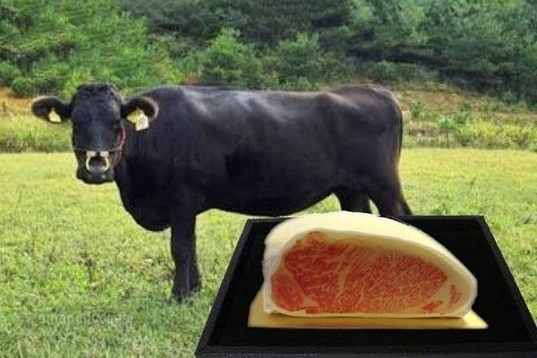 和牛サーロインケーキの画像8枚目