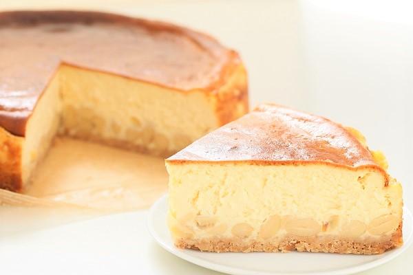 大洲大豆とクリーム豆腐のチーズケーキ 直径約22cmの画像5枚目