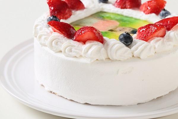 卵・乳製品・小麦粉除去 アレルギー対応カラーフォトケーキ 5号 15cmの画像8枚目