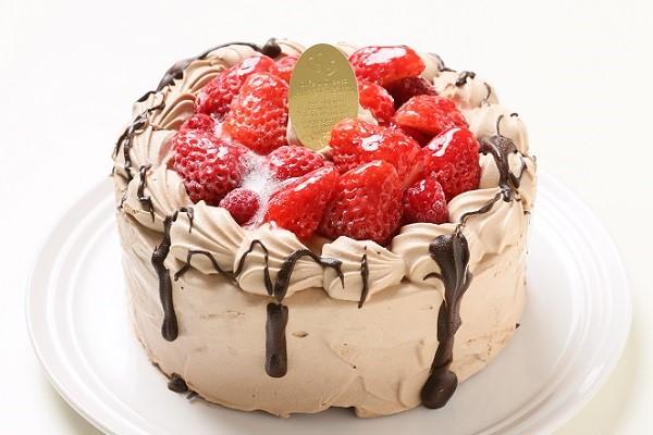 卵・乳製品・小麦粉除去可能 ナチュラルチョコクリームケーキ 5号 15cm