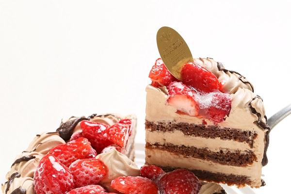 卵・乳製品・小麦除去 ナチュラルチョコクリームケーキ 5号 15cmの画像3枚目