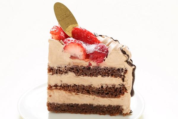 卵・乳製品・小麦除去 ナチュラルチョコクリームケーキ 5号 15cmの画像4枚目