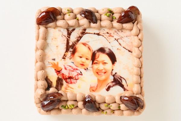 写真ケーキモンブラン Sサイズ 15cm×15cmの画像2枚目