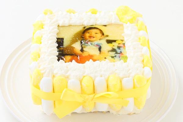 お好きな色が選べる!カラフルフォトケーキ 15×15cmの画像5枚目