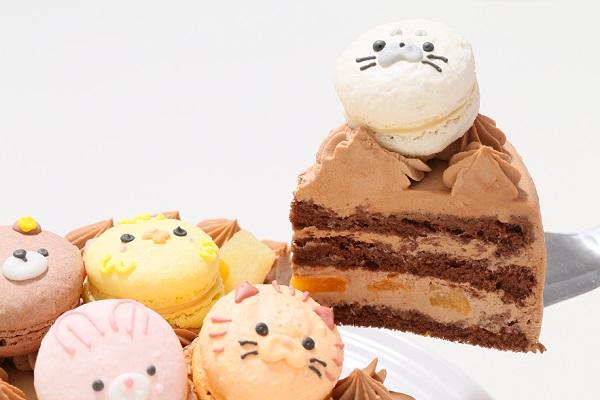 動物さんマカロンチョコクリームケーキ 4号 12cmの画像5枚目