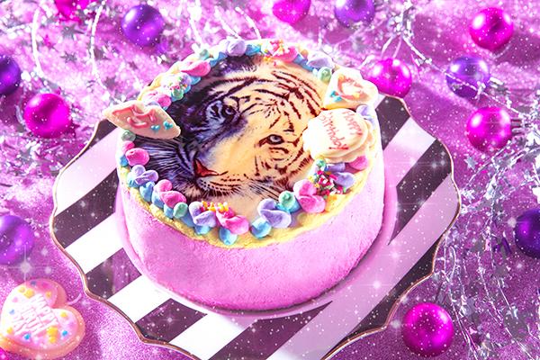 フォトケーキ 5号 生クリーム 15cm