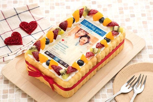 インスタグラム風フレームの写真ケーキ 23cm×15cm×6cm birthdaygramの画像1枚目