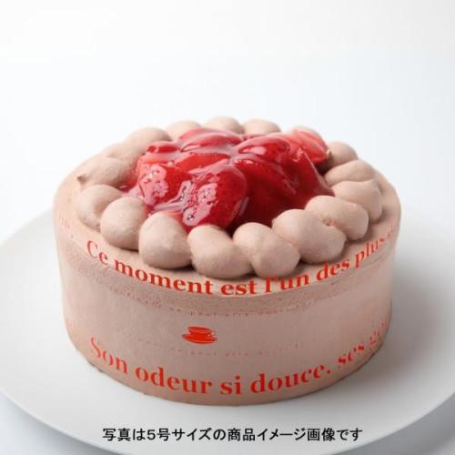 苺生チョコデコレーション 5号 15cm
