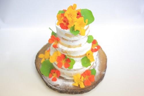首都圏限定配送 冷蔵お届け 送料無料 結婚式や二次会、大型パーティーに! 流行りのネイキッドケーキ フルーツ3段 下段24㎝中段16㎝上段8㎝  40~50人前