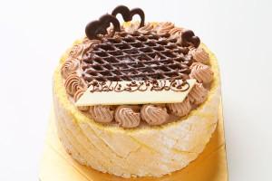 チョコ生デコレーションケーキ 5号 15cm